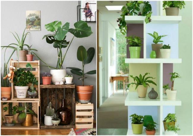 Tendencias Ecológicas en Decoración